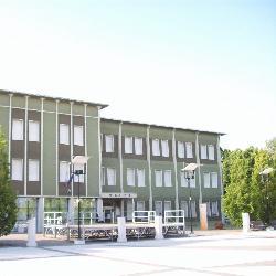 Borgovirgilio, Municipio di Vir